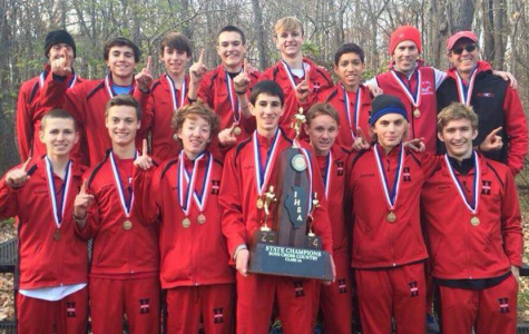 Cross country teams place at the state finals