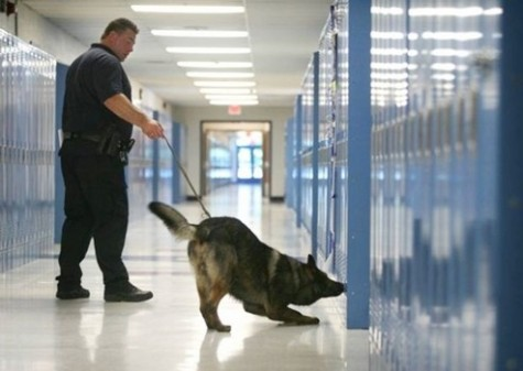 Second shelter in place involves schoolwide drug search