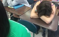 To sleep or to study?
