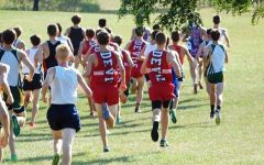 Boys cross country places third in Palatine Invite