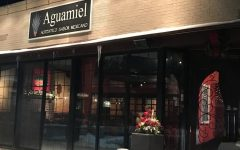 Aguamiel derives dishes from Mexican tradition
