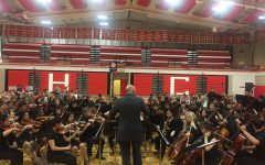 Concert springs orchestra into final performance season